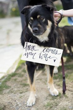 Sweet! Love this cute sign for this wedding dog | http://www.weddingpartyapp.com/blog/2014/08/29/dogs-at-weddings-35-furry-friends/