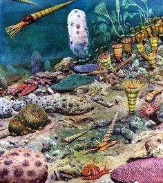Life in the Silurian Period by Zdeněk Burian