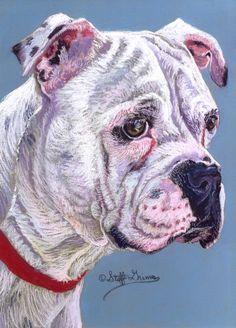 American Bulldog Painting  - American Bulldog Fine Art Print