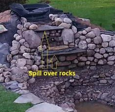 Gardens Discover How To Build A Pond - Backyard Water Garden pond How To Build A Pond - Backyard Water Garden Water Garden Plants Pond Plants Garden Ponds Aquatic Plants Pond Design Garden Design Building A Pond Diy Pond Garden Waterfall Garden Pond Design, Garden Ponds, Backyard Ponds, Backyard Waterfalls, Koi Ponds, Landscape Design, Ponds With Waterfalls, Natural Waterfalls, Backyard Ideas