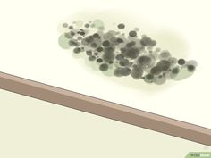 How to Remove Ceiling Mold (with Pictures) - wikiHow