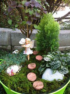 Amy Kate Gardens