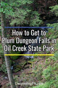 Plum Dungeon Falls is a beautiful spot along the Gerard Trail in Pennsylvania's Oil Creek State Park. Find out everything you need to know to visit this great destination. Waterfall Photo, Great Lakes Region, Beautiful Waterfalls, Travel Articles, Travel Around, Road Trips, Pennsylvania, State Parks, Family Travel