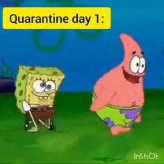 memes funny hilarious Days of Confinement Funny Shit, Crazy Funny Memes, Really Funny Memes, Funny Video Memes, Funny Laugh, Stupid Memes, Funny Relatable Memes, Haha Funny, Funny Jokes