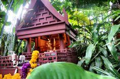 Bangkok in Five Photos – What Makes It So Damn Appealing?
