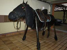 bauplan holzpferd amber pinterest holzpferd bauanleitung und pferde. Black Bedroom Furniture Sets. Home Design Ideas