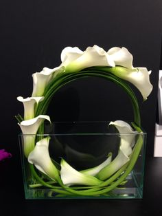 Beautiful calla lily design arrangements unique How To Arrange Calla Li. - Beautiful calla lily design arrangements unique How To Arrange Calla Lilies in a Tall Cyli - Contemporary Flower Arrangements, Creative Flower Arrangements, Flower Arrangement Designs, Ikebana Arrangements, Beautiful Flower Arrangements, Unique Flowers, Flower Designs, Floral Arrangements, Beautiful Flowers