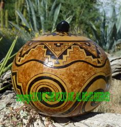 Anasazi Ancient Spirits Native American Sage Box gourd