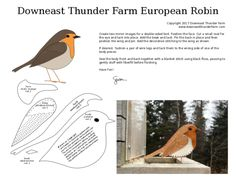 A European robin redbreast pattern to help welcome spring.