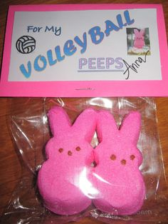 Easter gifts for volleyball team friends. hhaha i am going to do this next year! but for my birthday maybe. Volleyball Crafts, Volleyball Team Gifts, Volleyball Party, Dance Team Gifts, Cheer Gifts, Cheer Mom, Volleyball Ideas, Volleyball Quotes, Volleyball Decorations