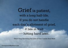 Heart Dog: Surviving the Loss of Your Canine Soul Mate Memorial Ideas, Dog Memorial, Pet Loss, Grief, Favorite Quotes, Survival, Memories, Amazon, Heart