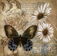 fulcrum gallery romantic flowers & butterfly