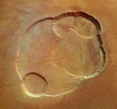 calderas at the summit of Olympus Mons, from Mars Express
