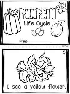 This is a fun addition to any pumpkin unit. Included are vocabulary cards to show how to carve a pumpkin. Also included are 2 emergent readers and a sequencing life cycle activity. By BB Kidz. Pumpkin Facts, Pumpkin Song, Pumpkin Life Cycle, Vocabulary Cards, Emergent Readers, Parts Of A Pumpkin, Kindergarten Songs, Life Cycles, New Classroom