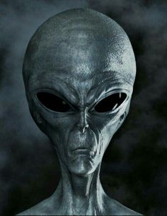 Bizarre and unidentified knocking sounds are heard in space, reports Chinese astronauts. Stories revolving around alien life and UFO incidents are nothing but mere mystery. Ancient Aliens, Aliens And Ufos, Aliens History, Alien Gris, Grey Alien, Mystery, Space Aliens, Alien Races, Alien Concept