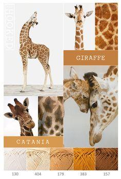 Kleurencombinatie van Catania garen - Giraf