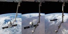 Cool! Hyperlapse toont hoe Cygnus het ISS verlaat: http://www.scientias.nl/cool-hyperlapse-toont-hoe-cygnus-het-iss-verlaat/104816… pic.twitter.com/qaFuGRR18c