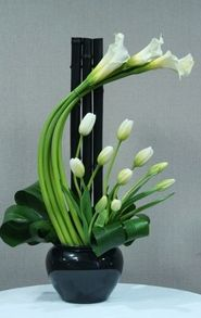 calas y tulipaes