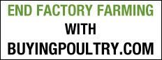 Buying Poultry - How you can help