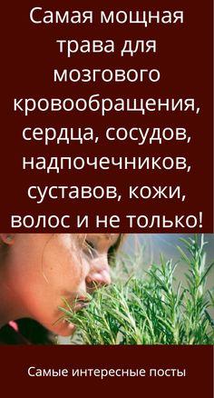 babushkina rețete despre varicoză