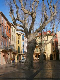 Roussillon - BeyondThePale: Collioure
