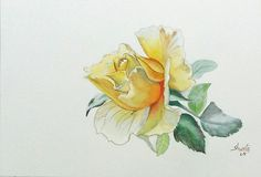 Yellow Rose Watercolor Painting by aakritiarts on Etsy