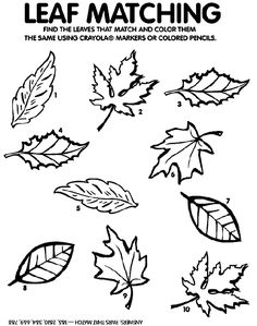Fall Leaf Coloring Page Unique Happy Fall – Fun Fall Books & Activities Updated for Fall Fall Leaves Coloring Pages, Leaf Coloring Page, Free Coloring, Colouring Pages, Coloring Pages For Kids, Printable Coloring Pages, Autumn Activities, Book Activities, Preschool Activities