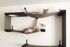 Les meubles à chats n'en finissent plus de nous surprendre! Cette fois,c'est un couple d'Américains qui a eu l'idée d'un parcours pour chats plutôt insolite