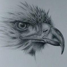 Patriotic/Eagles - Lessons - TES