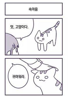 인간을-몰살시키려는-고양이-만화manhwa-3 Manhwa, Peanuts Comics, Memes, Cats, Gatos, Meme, Cat, Kitty, Kitty Cats