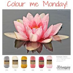 Brought to you by Scheepjes. Each Monday we release a new Inspirational Snapshot to help you plan your knit and crochet projects! Yarn Color Combinations, Colour Schemes, Crochet Art, Thread Crochet, Crochet Patterns, Yarn Colors, Colours, Color Me Beautiful, Color Of Life