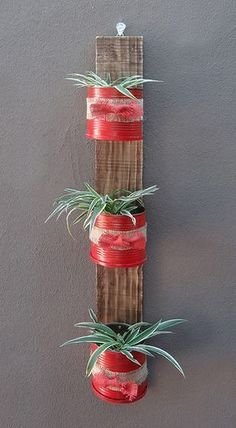 coffee cans are sprayed with rust-oleum satin poppy red to match the front door and potted up with hen and chicken plants.Recycled coffee cans are sprayed with rust-oleum satin poppy red to match the front door and potted up with hen and chicken plants. Coffee Can Crafts, Tin Can Crafts, Diy And Crafts, Garden Crafts, Garden Projects, Plant Projects, Recycle Cans, Deco Floral, Recycled Crafts