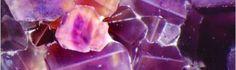 N° 1 Calcium Fluoratum (fluoruro di calcio)  Il compito fondamentale di questo sale è quello di conferire elasticità alle fibre, di permettere loro di allungarsi per tornare nuovamente alla forma originaria. La duttilità delle fibre muscolari è in stretta correlazione con la presenza di fluorite. È un importante elemento di composizione dello smalto dei denti delle unghie e del periostio. Facilita la circolazione e rinforza i piccoli vasi favorendo il riassorbimento di indurimenti vascolari.