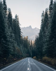 WISH YOU WERE NORTHWEST - expressions-of-nature: Untitled by Morgan.Makes me think of long car trips I made. The road ahead, the miles behind, the adventure beyond that awaits. Landscape Photography, Nature Photography, Travel Photography, Photography Backdrops, Portrait Photography, Wedding Photography, Outdoor Fotografie, Camping Photo, Tent Camping