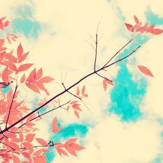 by Andrekart, via Flickr