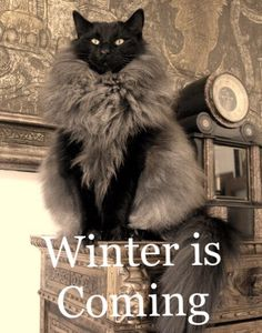 You know nothing, Jon Snow. Game of Thrones.
