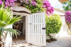 Gallery: taste the luxurious atmosphere - Hotel Ibiza Can Sastre Cozy Bar, Hotel Ibiza, Lodges, Outdoor Structures, Canning, Luxury, Gallery, Plants, Inspiration
