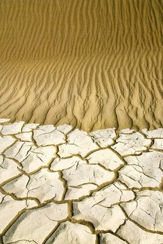 Mud Flat and Dunes by janet little, via Flickr