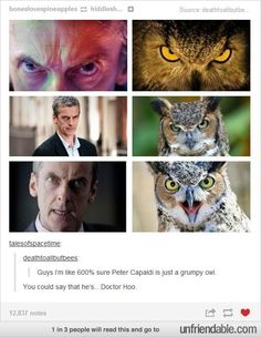Peter Capaldi = Doctor Hoo; OMG guys is this going to be like Sherlock/Otter and Watson/Hedgehog ?!