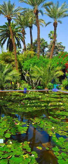 Majorelle gardens, Marrakech, Morocco …
