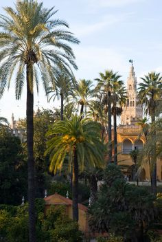 Krista Rossow - View of the gardens of the Royal Alcazar palace with the Giralda tower in the background in Seville, Spain.