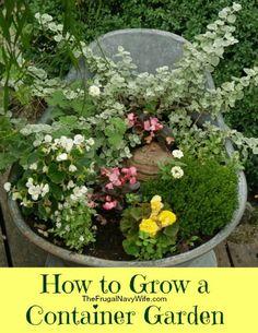 How to Grow a Container Garden #savingmoney #frugalliving #garden #gardening
