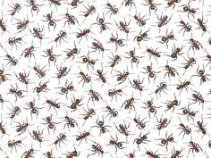 Fabri-Quilt - Paintbrush Studio 'You Bug Me!'