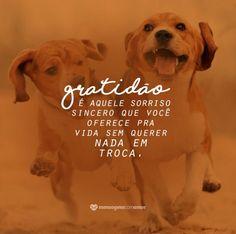 Sorriso sincero - Gratidão