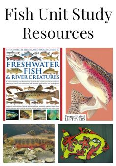Fish Unit Study Resources