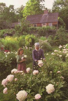 Tasha Tudor Garden / flowers | roses / place |