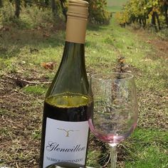 Nebbiolo is one of the alternative varieties grown in Bendigo Wine Region Image from Glenwillow Wines #glenwillowwines #bendigowines #auswine #nebbiolo Dry Red Wine, Different Wines, Cabernet Sauvignon, Pinot Noir, Wineries, Wine Country, White Wine, Alternative, Victorian