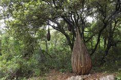スペンサー・バイルズによる「フランスの森の一年」。フランスの彫刻家。南フランスの森林の中で幻想的な構造を持った作品を手がけました。各々の作品は持続することを意図しておらず、一時的なものとして制作されています。現在66歳です。