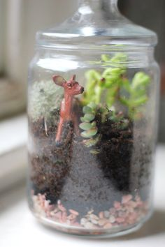 How to create a super cute terrarium, if, like me, you're lacking in garden space.  Definitely going to make a couple...