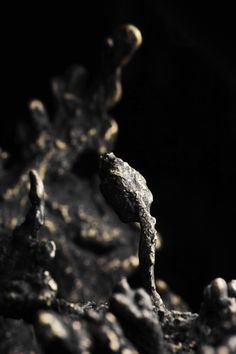 Detail shot of Bronze Sculpture by Driaan Claassen Design Fields, Bronze Sculpture, My Arts, Detail